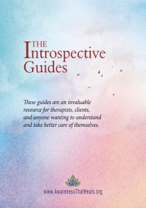 Introspective Guides Cover